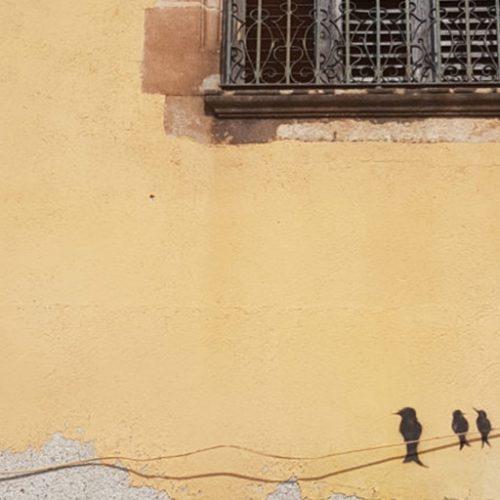 Photo oiseaux dessinés sur mur jaune.